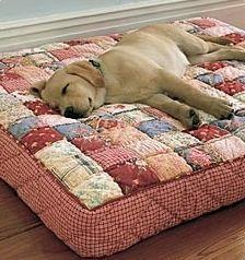 caminha de cachorro #PuppyBeds
