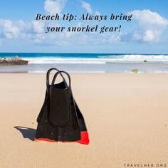Beach tip: Always bring your snorkel gear! #travelhertips #travel #tips #beach #beachtip #traveltips #travelher Check out our travel blog and website for all females who love to travel - www.travelher.org/ Let's celebrate and encourage travel addiction together! :)