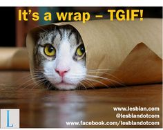 Friday - It's a wrap!