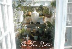 The Tin Rabbit