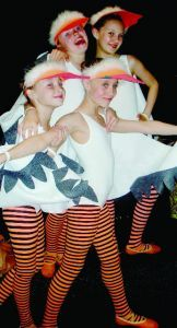 seagull costumes - i like the striped tights
