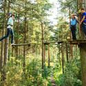 100 best places to take your kids to in Pennsylvania, Maryland& Virginia. (Seriously I wanna take the kids to #3 when they are older Go Ape adventure park for kids 10 & older)