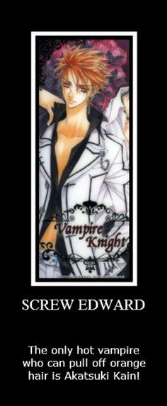 Akatsuki Kain from Vampire Knight