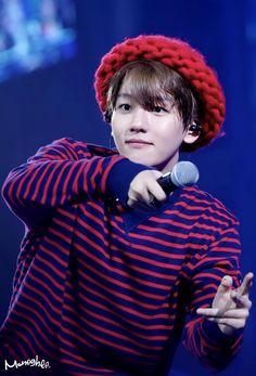 He's the cuter and naughtier than anyone Baekhyun, Park Chanyeol, Kyung Hee, Do Kyung Soo, Kim Joon Myeon, Exo Concert, Exo Do, Kim Min Seok, Kim Jong In