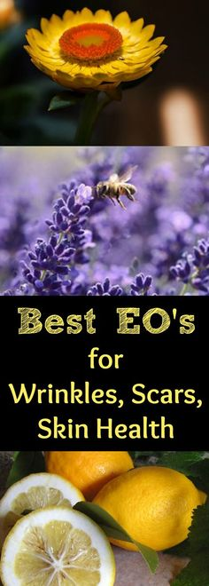 What are the best essential oils to use for wrinkles and anti-aging? Find out the BEST essential oils to use for aging skin and how to use them on your skin. Helichrysum, Frankincense, & Lavender are some of the best essential oils to use on wrinkled, agi Coconut Oil Facial, Coconut Oil Lotion, Coconut Oil For Face, Essential Oils For Skin, Frankincense Essential Oil, Essential Oil Uses, Helichrysum Essential Oil, Best Anti Aging, Anti Aging Skin Care