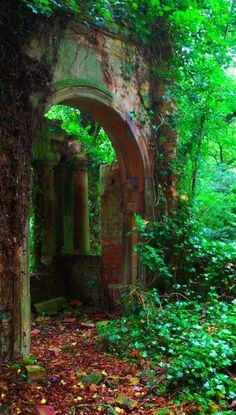 The Enchanted Forest / karen cox / Modern fairytale. A doorway to a new adventure...