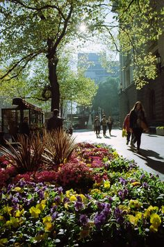 photo by Lanthanumglass:  Melbourne City  WInter in the city Swanston Street.   Melbourne Australia .  2012