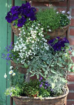Baskets overflowing with flowers:)