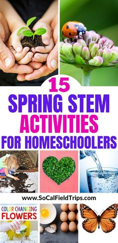 Stuck at home?  Try one of these 15 Spring STEM Activities For Kids that will keep little scientists engaged, learning and well-prepared for the 21st century! #stemactivities #stem #stemforkids #stemprojects #kidsactivities #handsonlearning #homeschool #homeschooling #homeschooler #homeschoolschedule #homeschoolactivities
