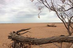 SA bushfires: Farmers fight to save topsoil after devastating 85,000-hectare blaze  - ABC News (Australian Broadcasting Corporation)