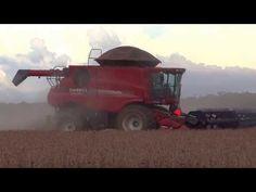 Safra 2013 2014 (9) - YouTube