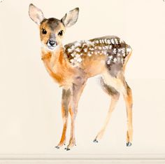 Adorable baby deer wall sticker, part of the magical and highly detailed watercolour Woodland collection. Dimensions : two to choose from: 40 x 30cm or 56 x 40cm. Printed onto a non PVC woven material with water based adhesive. The stickers can be repositioned and reused many times. Just peel off the backing sheet and place on your wall or any non-porous surface. Lovely thin and mat finish. design by duo Olesya Shchukina and Ksu for chocovenyl