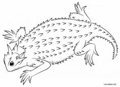 horned lizard coloring pages
