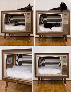 Vintage TV Converted Into the Cutest Kitty Lounge Our kitty would LOVE just one more hang-out spot – and old television cabinet re-made – Apartment Therapy Vintage Tv, Pet Furniture, Furniture Projects, Diy Projects, Repurposed Furniture, Furniture Design, Furniture Cleaning, Cheap Furniture, Entertainment Center Furniture