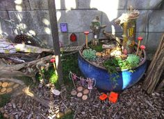 This, that and everything inbetween: Fairy and Miniature Gardens