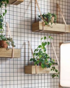 wooden planter boxes suspended with leather or metal straps from a metal mesh grid