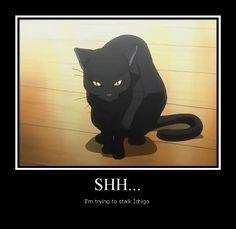 deviantART: More Like Yoruichi Cat Poster by Yoruichi-Shihoin14