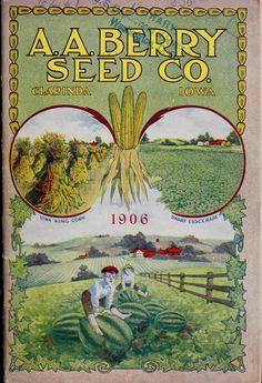 1906 catalogue