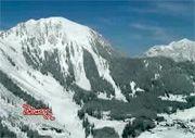 Skiing in Berwang.