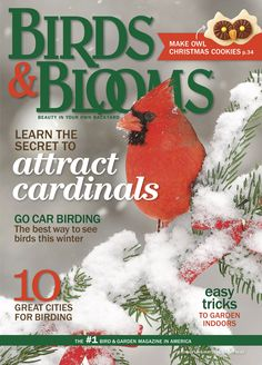 Dec./Jan. 2015 Birds & Blooms. birdsandblooms.com