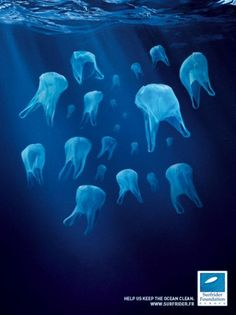 "These ""jellyfish"" are actually plastic bags. Help us keep the ocean clean.  www.surfrider.fr"