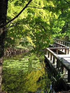 Pond bridge in Van Dusen Gardens, Vancouver, Canada.