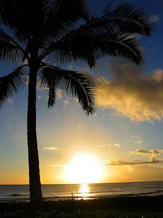 Sunset on Poipu Beach Poipu Beach, Sunrise, Celestial, Explore, Pretty, Outdoor, Islands, Pictures, Outdoors
