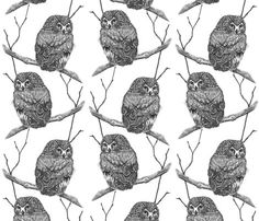Rsawhet_owl_ink_4_shop_preview