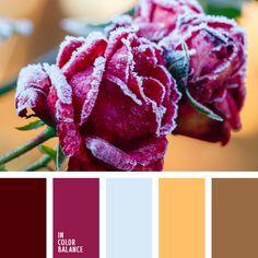 anaranjado, anaranjado claro, burdeos, burdeos oscuro, celeste pálido, color rojo vino, color rosa, color vino, elección del color, marrón, marrón burdeos, marrón cálido, selección de colores para el hogar.