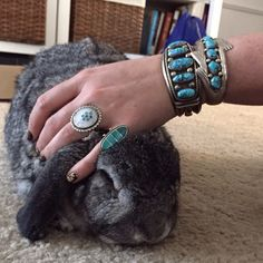 Some Bunny loves turquoise!