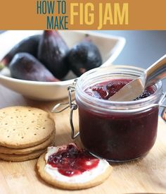 Wanting to know how to make fig jam? Check out this quick and easy fig jam recipe that will have you jarring jam in no time. Never use store bought again!