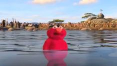 I think Elmo likes you Ironic Memes, Crazy Funny Memes, Really Funny Memes, Funny Video Memes, Stupid Memes, Funny Relatable Memes, Haha Funny, It Memes, Hilarious