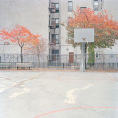Courts, Ward Roberts