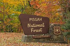 pisgah forest personals Pisgah national forest is a national forest in the appalachian mountains of western north carolina it is administered by the united states forest service.