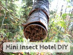 Easy Mini Insect Hotel DIY tutorial | Pieni Hyönteishotelli #insecthotel #naturalmaterials #upcycling