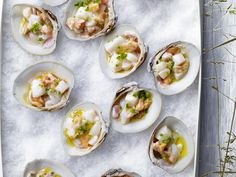 ceviche on the half shell - foodtv