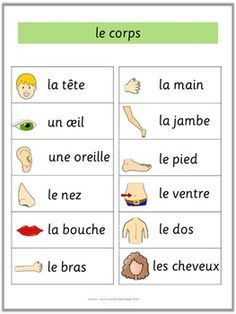 French Word Walls  Basic Vocabulary