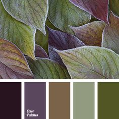Color Palette #2902 (Color Palette Ideas)
