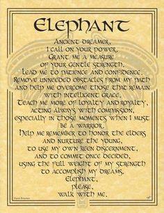 Elephant Prayer Poster