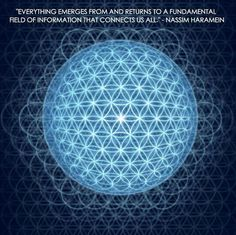 """Everything emerges from and returns to a fundamental field of information that connects us all."" – Nassim Haramein The Resonance Project • The connected universe •"