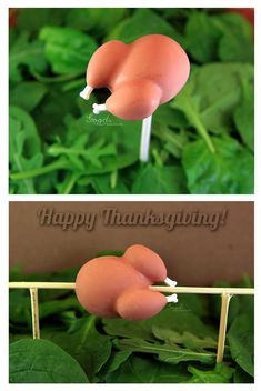 Cake Pop Shaped Like a Turkey