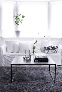 Elegant living room in white and grey.