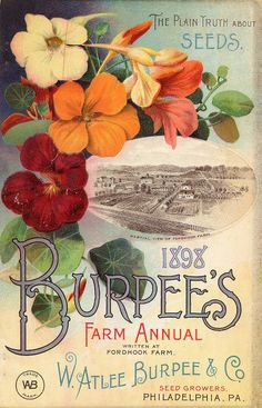 Burpees 06 1898 Seed Company Bright Colorful Print Vintage Reproduction Print 11 by MahoneyLane on Etsy Images Vintage, Vintage Diy, Vintage Labels, Vintage Postcards, Vintage Ephemera, Poster Vintage, Vintage Country, Garden Catalogs, Seed Catalogs