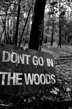 mark my woods if you see this sign on halloween dont ignore it or it will be your doom.dont go into the woods , ominous warning Into The Woods, San Andreas, Story Inspiration, Writing Inspiration, Aliens, Haunted Woods, Haunted Forest, Haunted Hayride, Haunted Trail Ideas