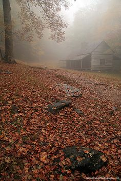 Home of my dreams in a place of my dreams : )  Cabin in Fog - Great #Smoky #Mountains National Park