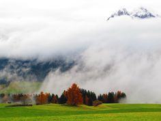 San Candido, Innichen. Punteria, Pustertal