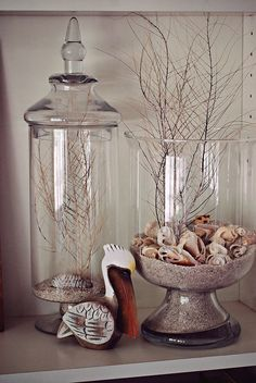 Jar Decoration Ideas – 5 Steps in Decorating Jar Lid Displays for shell and coral I collected while in vacation. decorating-misc The post Jar Decoration Ideas – 5 Steps in Decorating Jar Lid appeared first on Womans Dreams. Glass Jars With Lids, Jar Lids, Jar Decoration Ideas, Jars Decor, Display Ideas, Decorating Ideas, Decor Ideas, Shell Display, Decorating Bookshelves