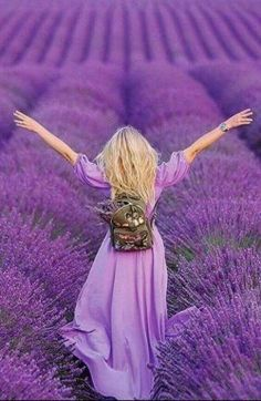 Lavender In Garden . Lavender In Garden . for the L Of Lavender Lavender Field In Provence
