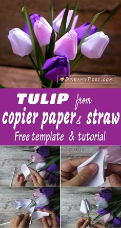 Free tulip paper flower template and tutorial, paper flowers tutorial, #papertulip #paperflowers #free template