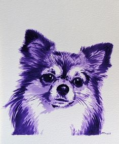 """""""Purple Chihuahua"""" by Jane Thuss. Acrylic on water colour paper."""